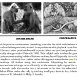 The Role of Cooperative Breeding in Modern Human Evolution