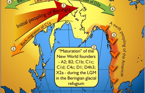Dene-Yeniseian Language Family: Evidence for a Back-Migration to the Old World?