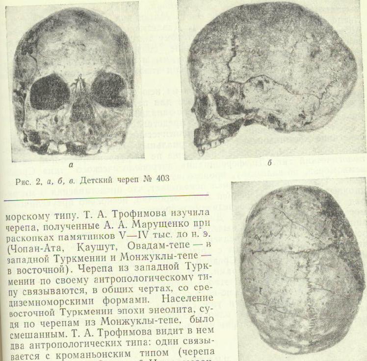 TutkaulSkull-2