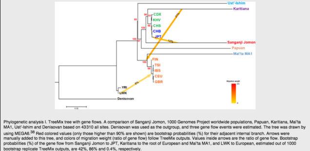 Ancient Jomon DNA and the Specter of European Admixture in Amerindians